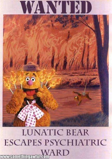 Smokey The Bear Meme - image 764380 smokey the bear know your meme