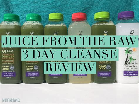 Testclear 1 Day Detox Reviews by Detox Archives Muffinchanel