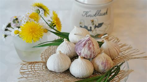 Garlic Detoxing Intestines by Three Candida Cleanse Recipes Cleanse Help