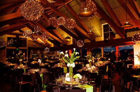 Ceiling Decoration Lights Grapevine Balls With Lighting Wedding Inspiration