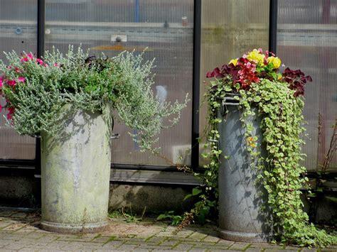 Garten Deko Milchkanne alte milchkannen bepflanzen garten anders ungew 246 hnlich