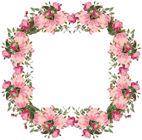 printable pictures of real flowers 1332 best images about clipart frames on pinterest