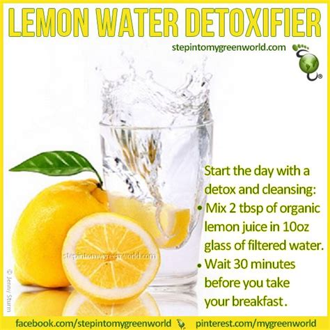 Healthy Ways Of Detoxing by 15 Best Detox Drinks Images On Detox Drinks