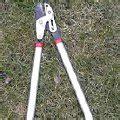 baumschnitt wann verboten b 228 ume schneiden baumschnitt obstbaumschnitt