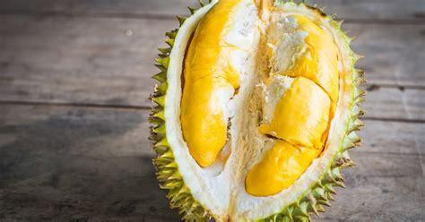 Harga Kandungan Alkohol Anggur Premium by Apakah Kandungan Alkohol Dalam Durian Membuat Buah Ini