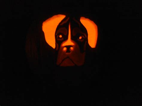 puppy pumpkin carving best photos of simple boxer template boxer pumpkin carving patterns boxer