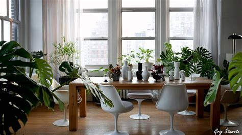 indoor plant design plants and greenery in your interior design youtube