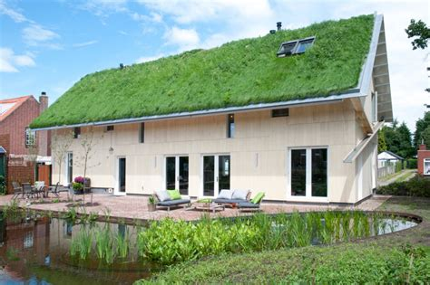 grass roof house design grass roof house bold design project small design ideas