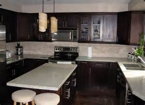 Expresso Kitchen Cabinets by Espresso Kitchen Cabinets Afreakatheart
