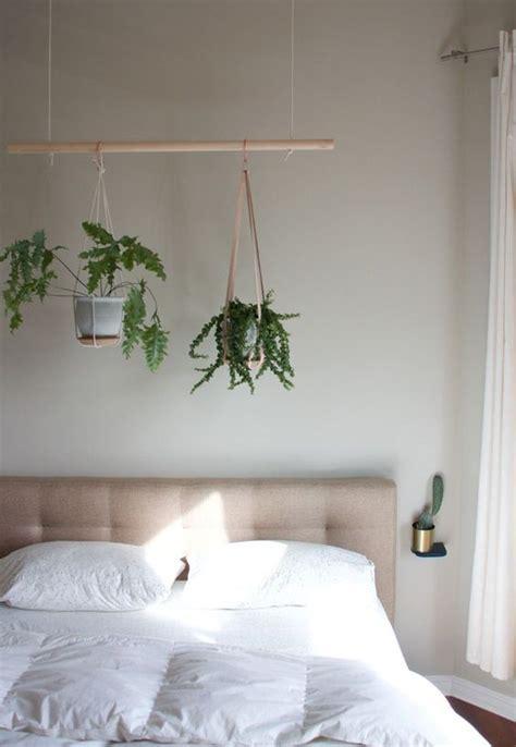 indoor plant displays  wont spoil interiors