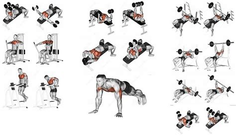 Chest Exercises With Dumbbells Without Bench 8 Best Exercises To Develop A Mighty Chest Fast