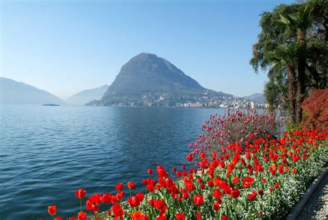 a lugano discover lugano thanks to our insidertips accorhotels