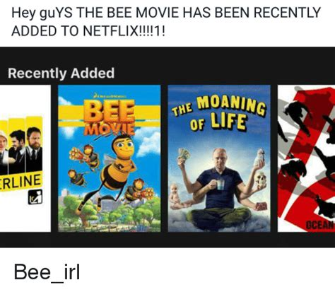 Been To The Recently by Hey Guys The Bee Has Been Recently Added To Netflix