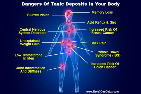 Does Detoxing Clean Out Your Blood by How Toxins Affect Our Health Fitness Foods