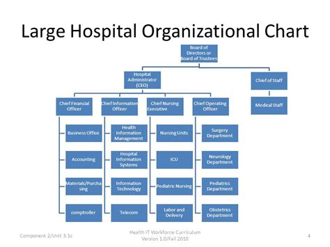 hospital organizational chart component 2 the culture of health care ppt