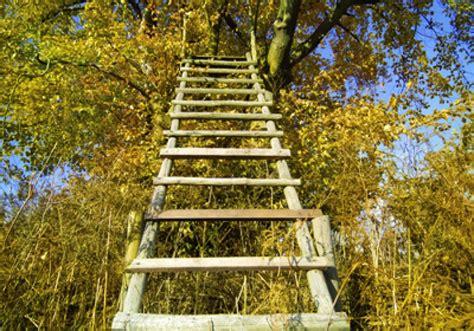 Richtiges Lackieren Von Holz by Wie Sie Holzschutz Richtig Lasieren Und Lackieren