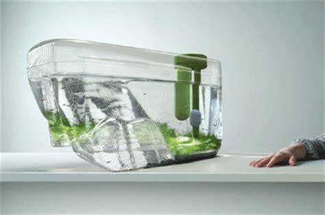 aquarium design vorschläge benjamin graindorge