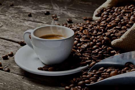 Coffee Roasting coffee roasters unleashed software
