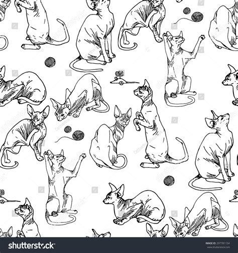 collection graphic hand drawn sphynx cats stock vector
