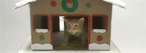 petsmart cat house diy cat gingerbread house petsmart