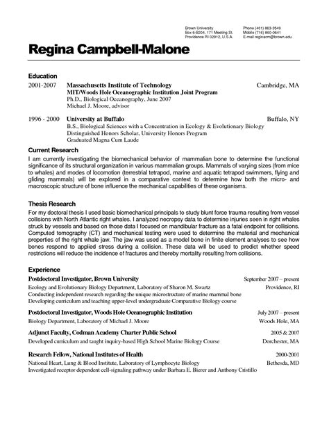 resume wizard templates free professional resume