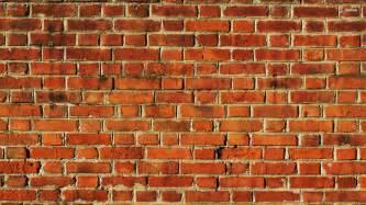 1v1 miguel the brick wall