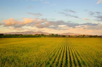 irc section 121 1031 exchange when selling farm with a primary residence