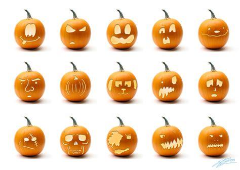 pumpkin lantern designs the zoologist o lantern designs 2011