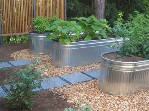 Water Trough Planters by Water Troughs As Planters Liking It Gardening