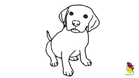 how to draw a puppy easy animal drawings for beginners drawing of sketch