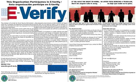 printable e verify poster e verify and right to work laminated combo poster