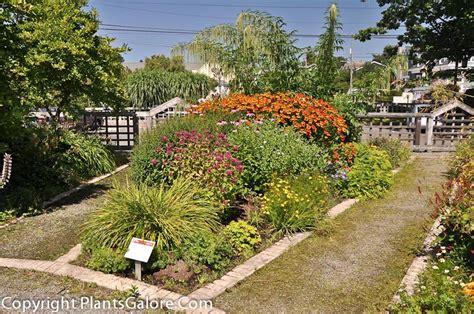 Uw Botanic Gardens Of Washington Center For Horticulture Usa Gardens Parks Squares And Open
