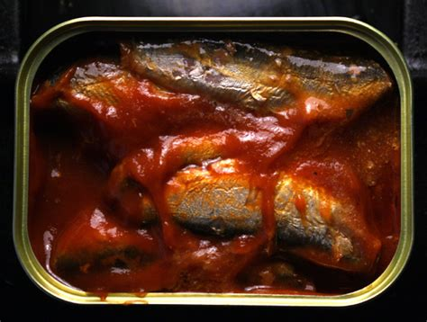 Nison Sardine In Tomato Sauce the 99 cent chef sardines in tomato sauce with olive