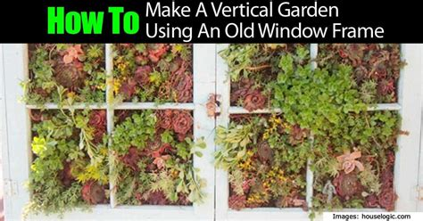 how to make a vertical garden out of an window frame