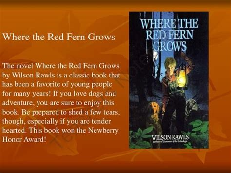 themes in the book where the red fern grows 1000 images about novel studies 6th 8th grade on