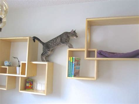 modern cat tree type choose ideal and modern cat tree modern cat tree alternatives for up to date pets