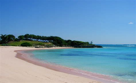 beaches with pink sand pink beach world for travel