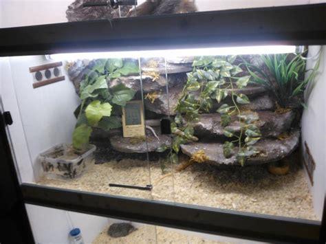 lade per rettili tartarugando illuminazione per rettili lade ai vapori di