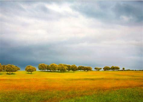 imagenes de paisajes llaneros pintados al 243 leo pintura paisaje con llano al 243 leo paisajes