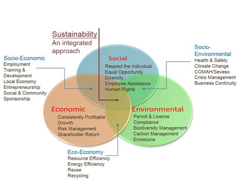 Sustainability Is by Sustainability What Can It For Your Business