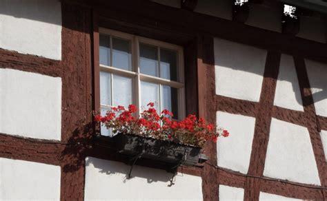 fioriere per davanzale finestra fioriere come sceglierle