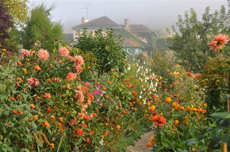 giverny  beauties  october