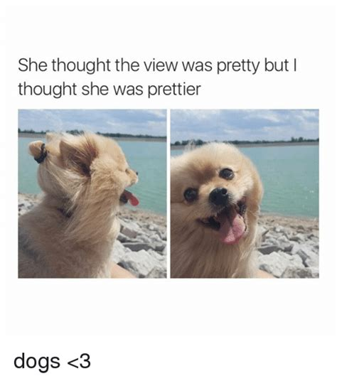 The View Meme - she thought the view was pretty but i thought she was