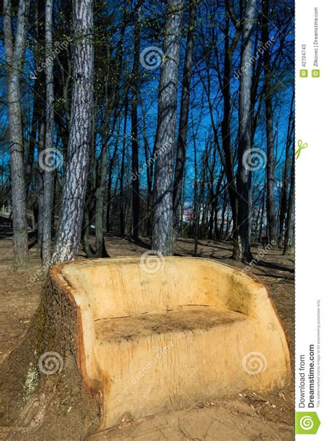 bench in nature my space in nature big wooden bench from a tree t stock