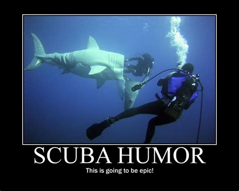 Scuba Diving Meme - scuba divers quotes like success