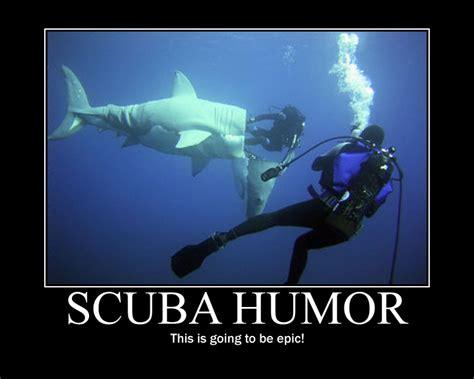 Scuba Meme - scuba divers quotes like success