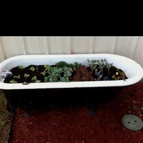 Bathtub Planter by 17 Best Images About Bathtub Garden On Gardens