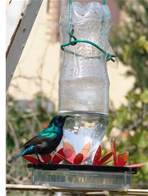 home dzine garden | don't forget to feed the birds