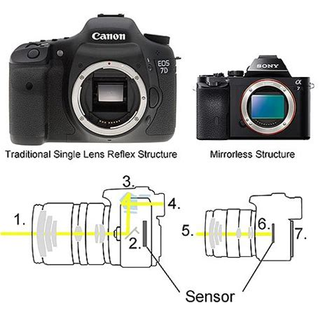 canon mirrorless dslr dslr vs mirrorless structure photography