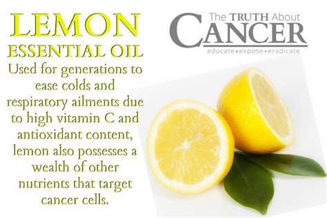 Why Science is Sweet on Lemon Essential Oil as a Cancer ... Lemongrass Benefits Cancer